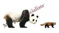 Panda-Illustration